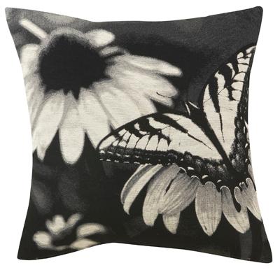 moltex. Black Bedroom Furniture Sets. Home Design Ideas